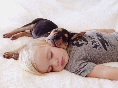 toddler-naps-with-puppy-theo-and-beau-13