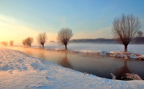 winter-sunrise-tree-river-snow-nature